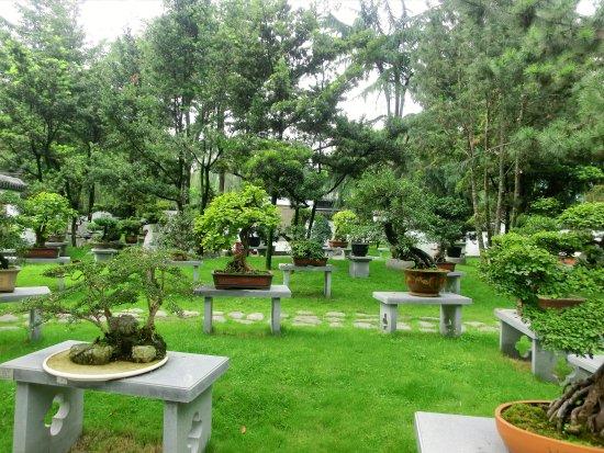 Jiang' an County, China: 成都盆景园