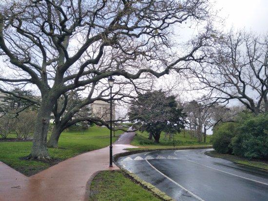 Auckland Domain: 中央公园2