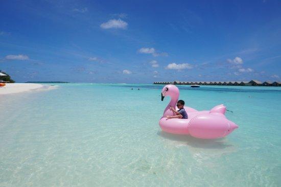 LUX* South Ari Atoll: photo3.jpg