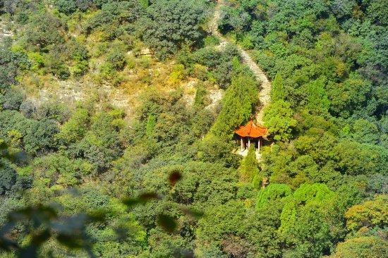 "Linqu County, China: 石门坊古称石门山, 海拔526米,位于县城西南十余公里,交通便捷。景区包括石门山、太平崮、天柱峰三大景点,面积约十余平方公里。古以""晚照""闻名,现以红叶著称,与北京香山、南京栖霞山、苏州天平山"