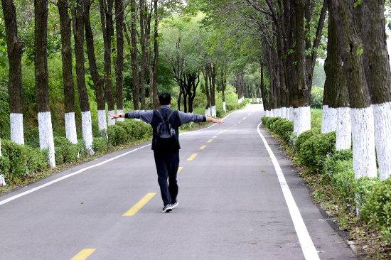 Linqu County, China: 潍坊石门坊
