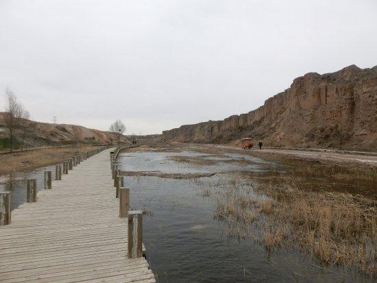 Lingwu, China: 有桥有山有水有牛车