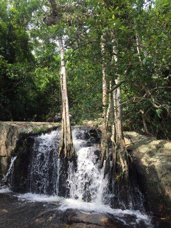 Yanuo Tropical Rain Forest Resort: photo0.jpg