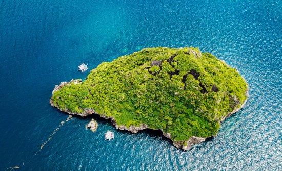Malapascua Island, الفلبين: 推荐潜导Damz