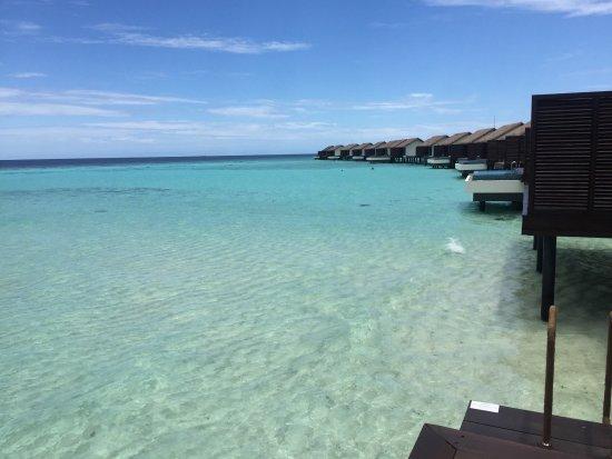 The Residence Maldives: photo1.jpg