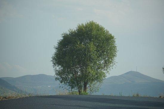Weichang County, Cina: 塞罕坝的景色。这是9月初的塞罕坝的景色。这是个不尴不尬的季节,夏季的景色有些晚;离秋季的红色有些早。据当地人的介绍,夏季在8月、秋季在10月中旬。即便不是当季也很美。建议开越野车去