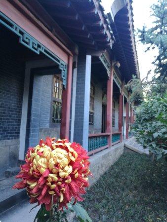 Zibo, China: 趵突泉,不虚此行
