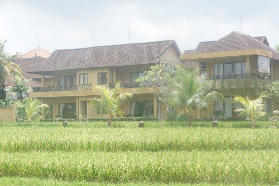Sri Bungalows: 打开门看到大片麦田