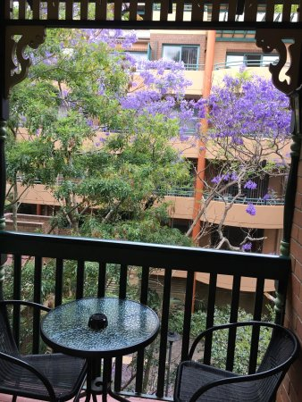 Chatswood, أستراليا: photo1.jpg