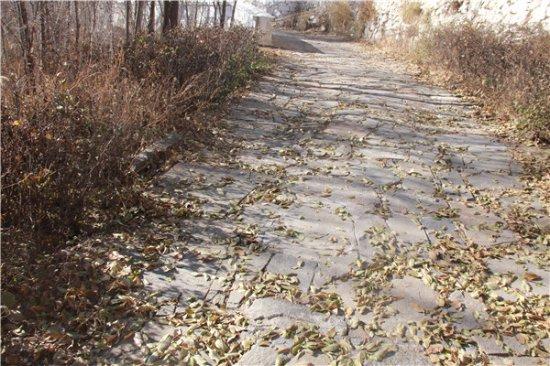 Baotou, Kina: 落叶满地,凌乱美