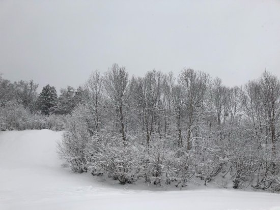 Kagura Ski Resort: Ski at Christmas Day under strong wind and heavy snow.