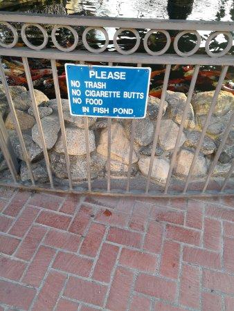 Pico Rivera, CA: 鱼池提示语