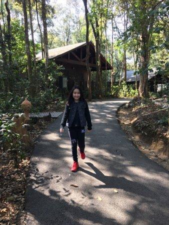 Pu'er, Chiny: 小熊猫庄园