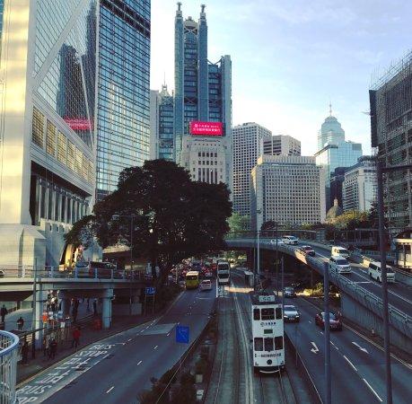 Hong Kong Tramways (Ding Ding): photo3.jpg