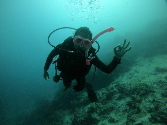 Philippine Fun Divers, Inc.: 学习ow+aow!