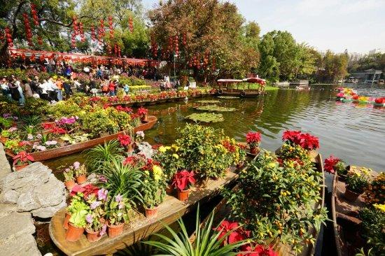 Liwan Lake Park