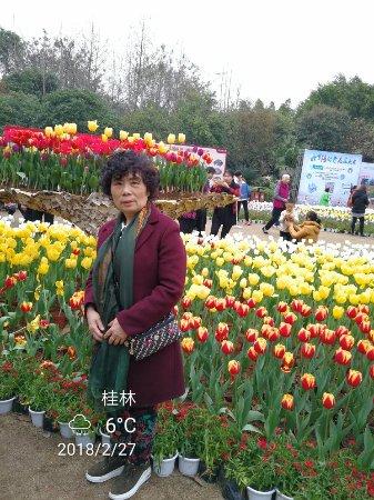 Luohe, Çin: 去试试好玩不