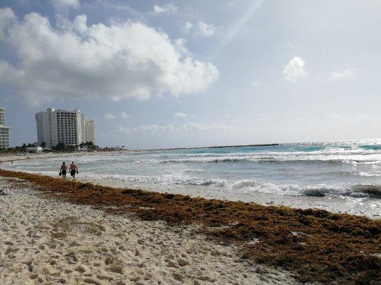 Forum Beach Cancun: IMG_20180311_094934_large.jpg