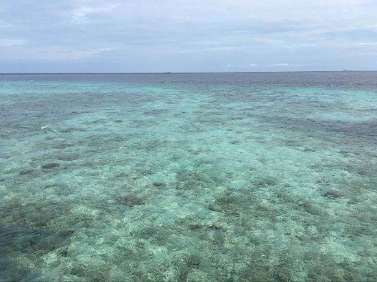 Pom Pom Island Resort & Spa Photo