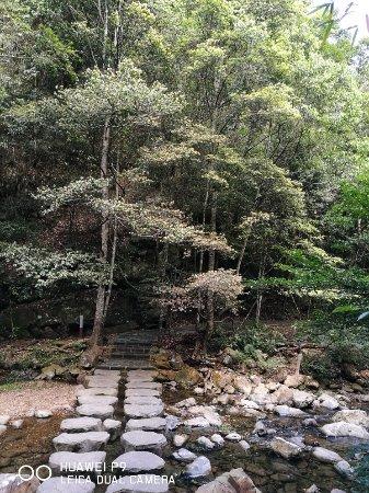Youxi County, الصين: 九阜山