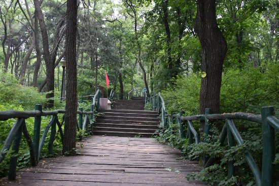 Zibo Lushan National Forest Park: 鲁山