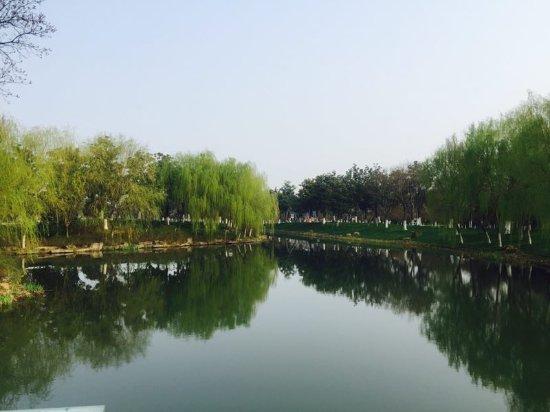 Bed - Picture Of Fairmont Yangcheng Lake  Kunshan