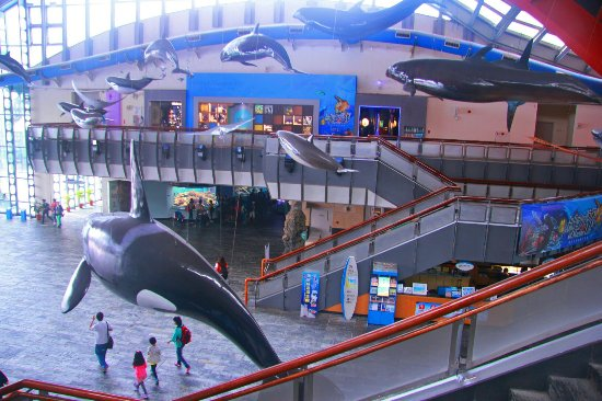 Checheng, Pingtung: 国立海洋生物博物馆