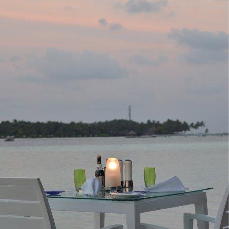 Vilu Restaurant and Bar Φωτογραφία