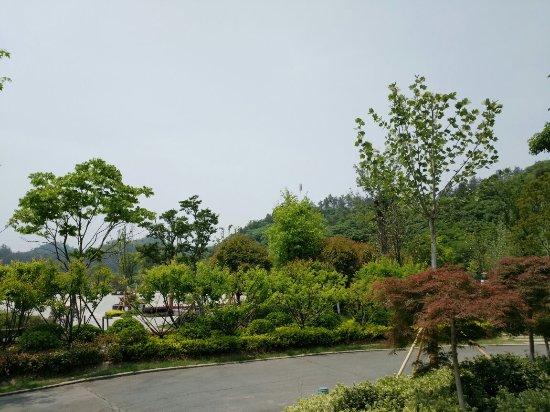Sifangshan Botanical Garden