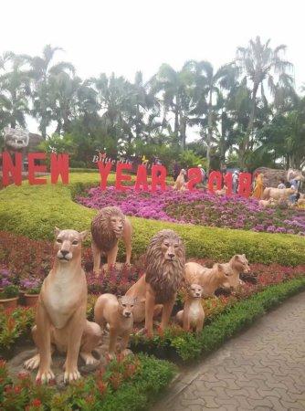 Nong Nooch Tropical Botanical Garden: 这里很大很大,听导游说这里的主人是一位华裔。景色很漂亮,有大象表演,民族歌舞表演。很适合小朋友玩乐