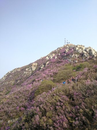 Grand Black Mountain of Dalian: 大连大黑山