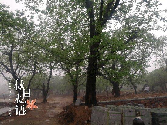 ZhongGuo DiLiuCi QuanGuoDaiBiao DaHui JiNianGuan
