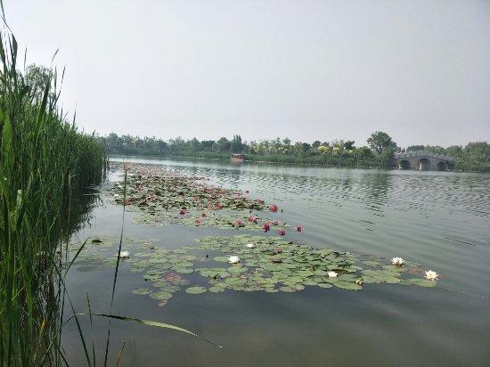 Mata Lake
