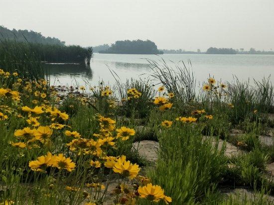 Huantai County, الصين: 自然广阔,北方西湖