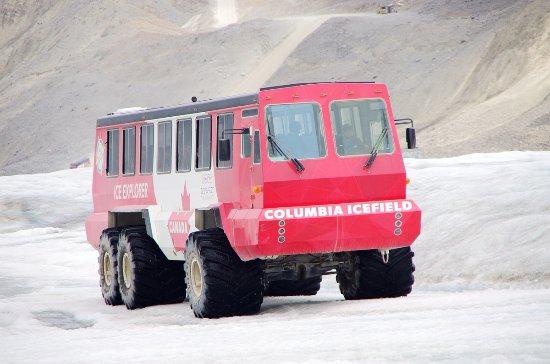 哥伦比亚冰原: 霸气的定制大巴,冰原专用