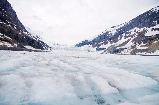 哥伦比亚冰原: 走进冰原