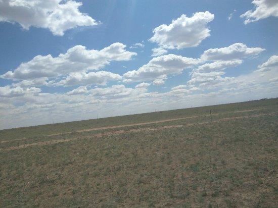 İç Moğolistan, Çin: 5月份的内蒙古草原,来的有点早,草还没长好