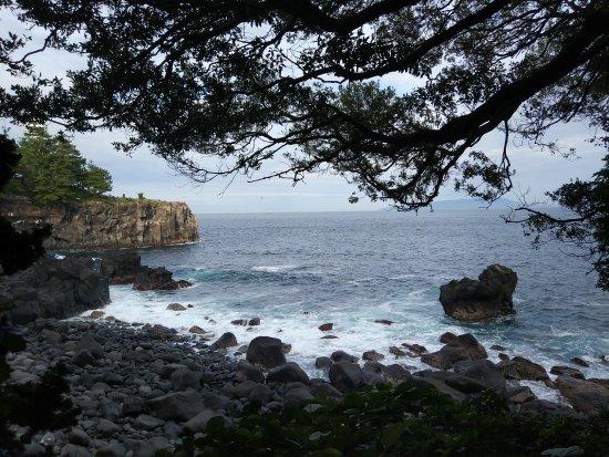 Jogasaki Coast: 城崎海岸
