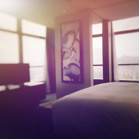 济南鲁能希尔顿酒店及公寓照片