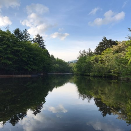 Kumoba Pond: photo1.jpg