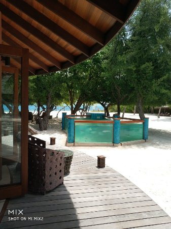 Dhonakulhi Island: IMG_20180721_150650_large.jpg
