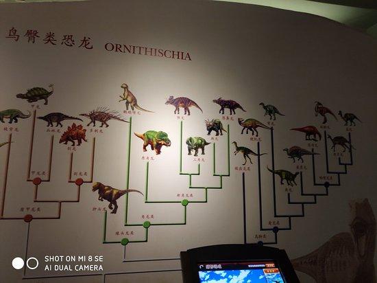 南京地质博物馆