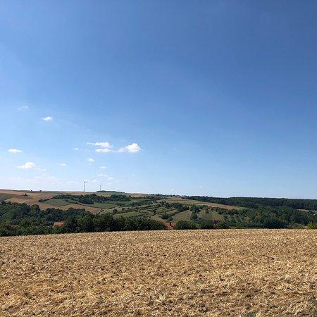 Kreuzweg zum Käppele: 沿着宗教连环画一路上山,盛夏的田野有一种成熟丰腴的美,让人感到格外安心。值得重返。