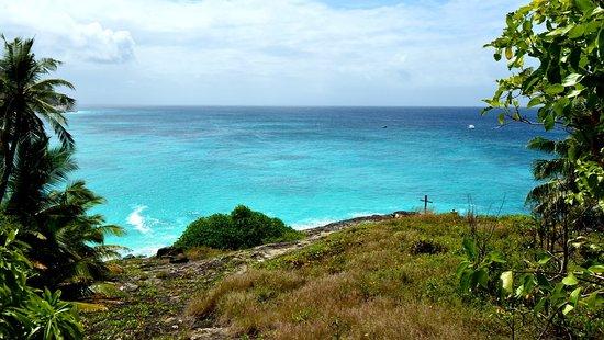North Island Photo