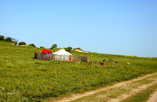 Wulan Butong Grassland: 乌兰布统草原
