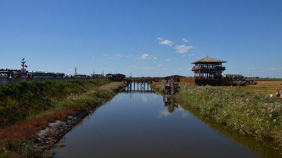 Dawa County, Chiny: 芦苇荡