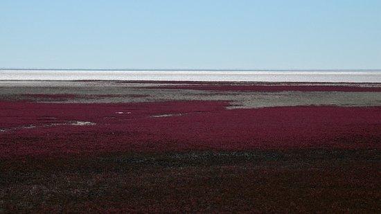 Dawa County, Chiny: 红海滩
