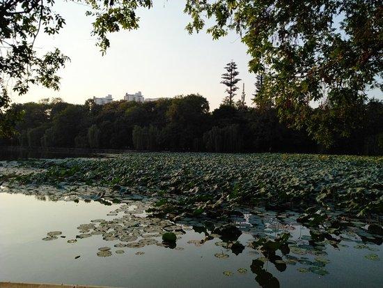 Baohexiuse Scenic Area