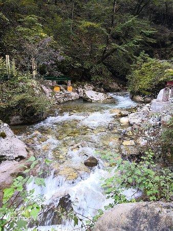 Dangchang County, China: 官鹅沟国家森林公园