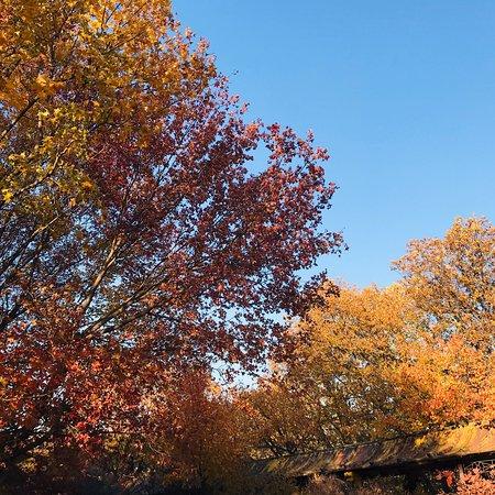 Siping, China: 秋天过来的,下午3点前能到最佳,4点多看看落日,天空的颜色很漂亮